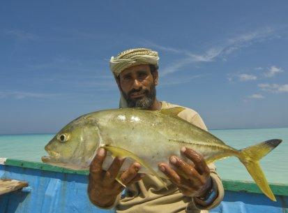 Yemen – Isola di Socotra
