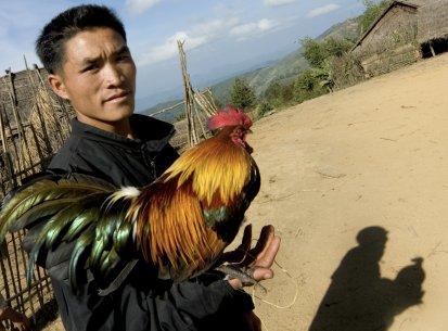 Laos – Etnia Hmong