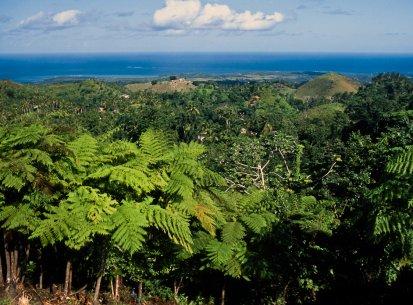 Repubblica Dominicana Parco Haites